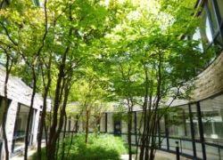 トスラブ箱根和奏林